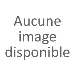 INDICATEUR DE QUANTIME CHAMPAGNE ANGLAIS RX 1555