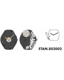 Movement ETA 802001